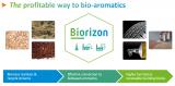 Biorizon image