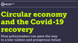 Circular economy and the Covid-19 recovery