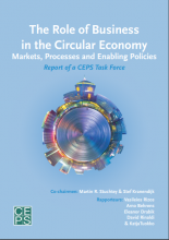 The Role of Business in the Circular Economy Markets, Processes and Enabling Policies