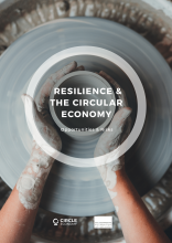 Resilience and the circular economy