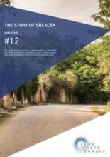 Case study Salacea