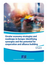 Circular economy strategies and roadmaps in Europe