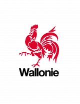 Wallonia logo