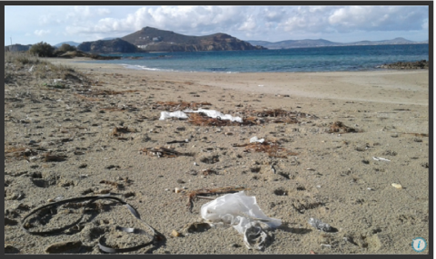 New tool to help companies fight plastic pollution
