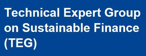 Technical Expert Group on Sustainable Finance (TEG)
