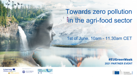 Towards zero pollution in the Mediterranean agri-food sector