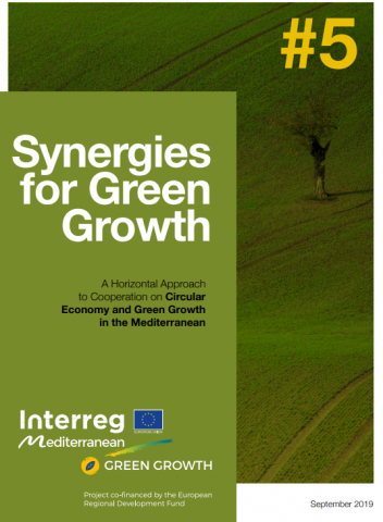 Synergies for Green Growth