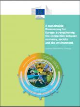 Bioeconomy strategy